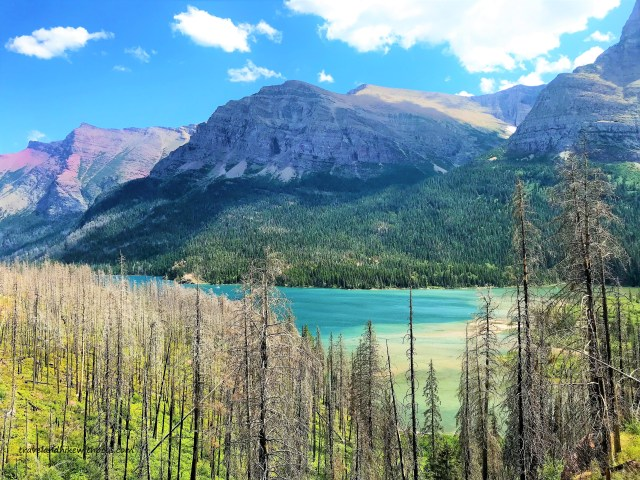 View of St. Mary Lake from trail to St Mary Falls Glacier National Park Montana