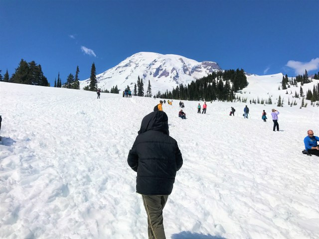 Visitors enjoying the snow at Paradise in early Summer Mount Rainier National Park