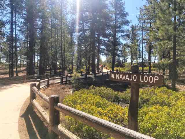 Stroller/Wheel Chair friendly Paved Road leading to Scenic Vista Rim View. Best Hikes in Bryce Canyon National Park