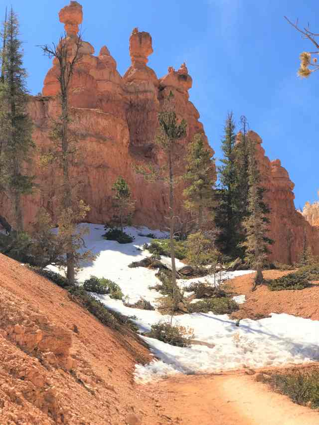 Red Color Hoodoos and White Snow stealing the show at Bryce Canyon. Best Hikes in Bryce Canyon National Park.