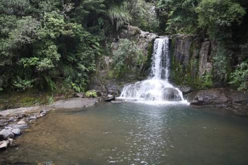 waiau-falls-cascade-coromandel