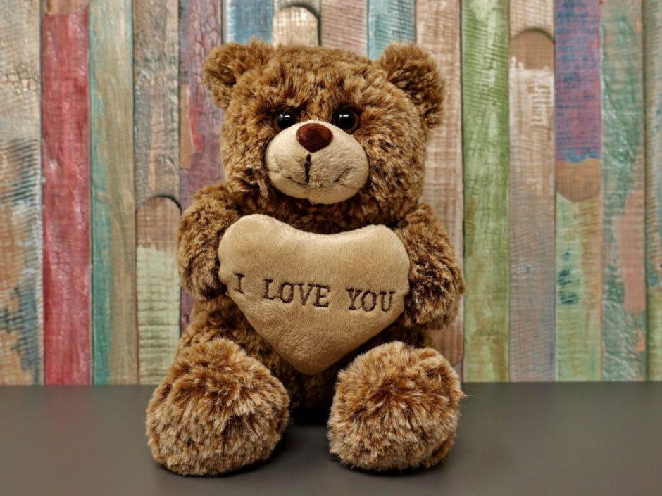 ourson-amour-love-friend