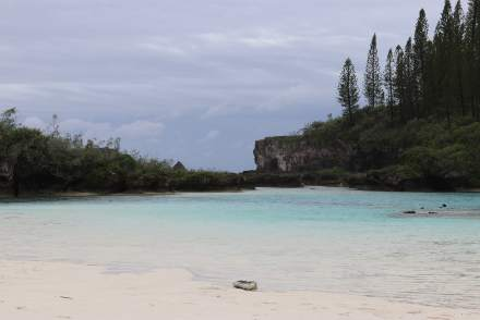 piscine naturelle-natural pool-caledonie-caledonia-iles des pins