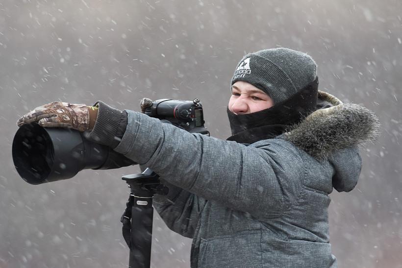 13-летний фотограф выиграл престижный канадский конкурс фотографии дикой природы