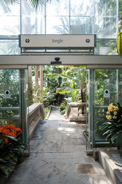 Entrance to the Jungle room, US Botanic Garden.