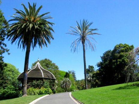 Grădina Botanică