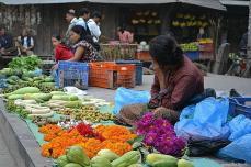 Crăiţele sunt flori importante pentru nepalezi. Le întâlneşti oriunde, sub formă de ghirlande. Au un parfum discret și ţin foarte mult.