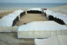 Qatar - Oază la malul mării