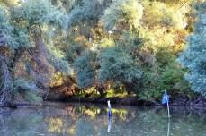 Pe canale
