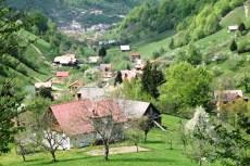 Valea Șimonului