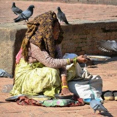 Patan - femeia cu porumbeii