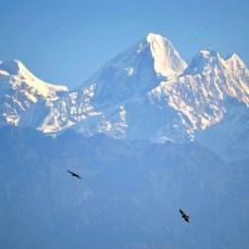 Nagarkot - himalayenii Dome Blanc 6830m şi Dorje Lakpa 6988m