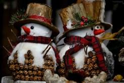 Târgul de Crăciun - Viena