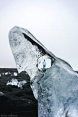 Ochi de gheață
