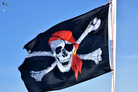 S-a arborat steagul pe Elisabet - din nou la drum!