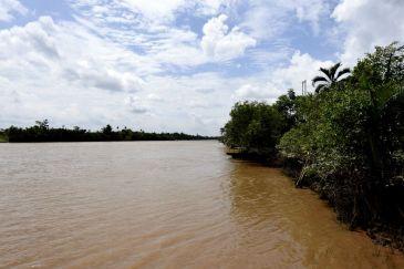 Delta Mekongului