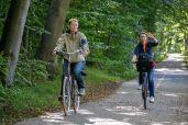 Biciclind de zor