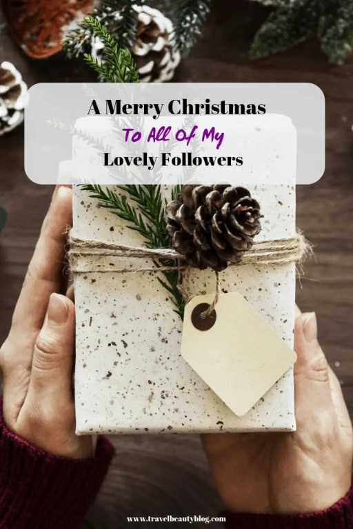 A Merry Christmas To All Of My Lovely Followers | Travel Beauty Blog