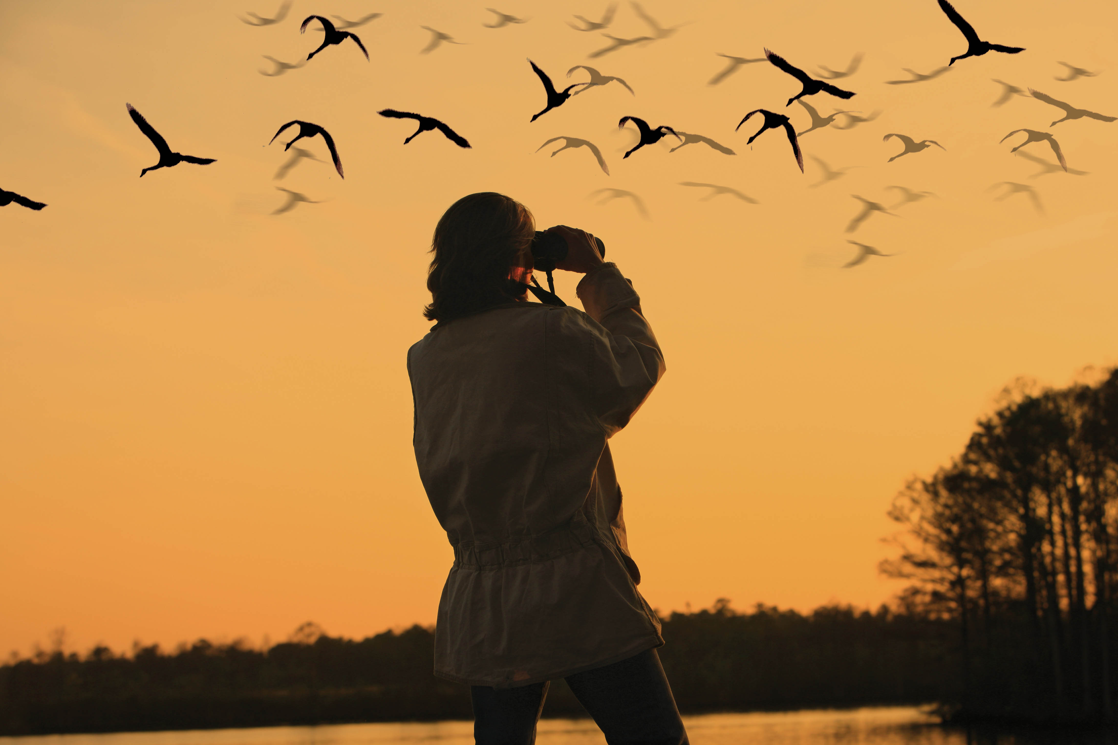 5 Best Places In The World For Birding
