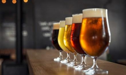 La Science des bières acidulées