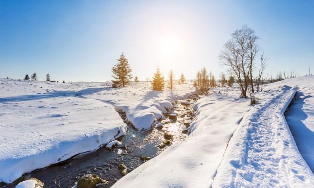 Balades hivernales en Ardenne