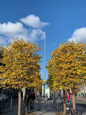 Fall in Dublin was breathtaking