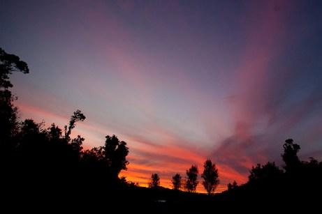 08-NewZealand-FranzJoseph