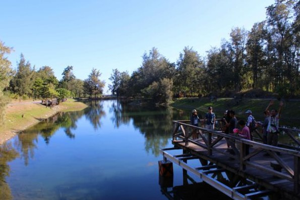 台東旅遊景點》台東森林公園(琵琶湖)+海濱公園,全台灣最棒的單車聖地一日遊行程!