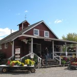 Set in Princeton, New Jersey, Terhune Orchards is a charming farm and vineyard with a relaxing country atmosphere for both grown-ups and kids to enjoy.