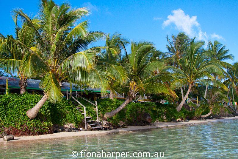Tanu Beach Fales, Savaii Island Samoa
