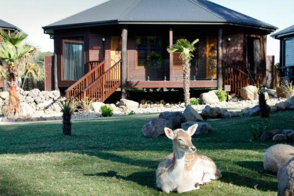 Jamala Wildlife Lodge Canberra Australia   Travel Boating Lifestyle