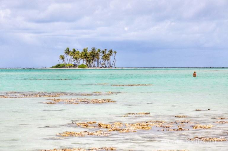 Rangiroa-Tahiti050