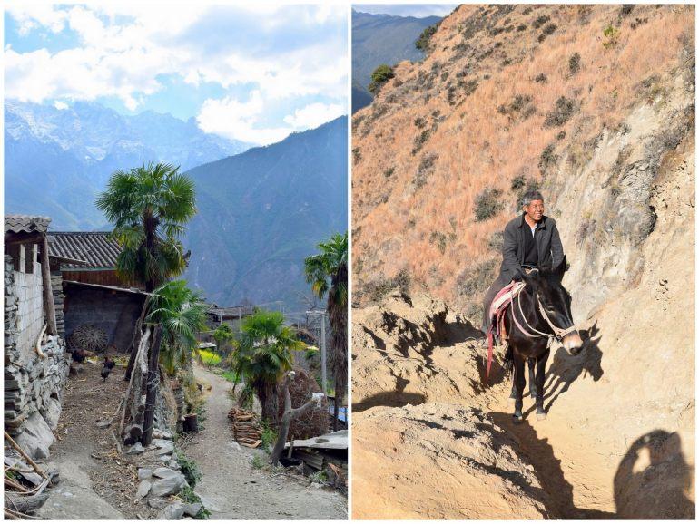 מימין - מוביל סוסים; משמאל - הדרך עוברת בתוך הכפרים (צילום: טל ניצן)