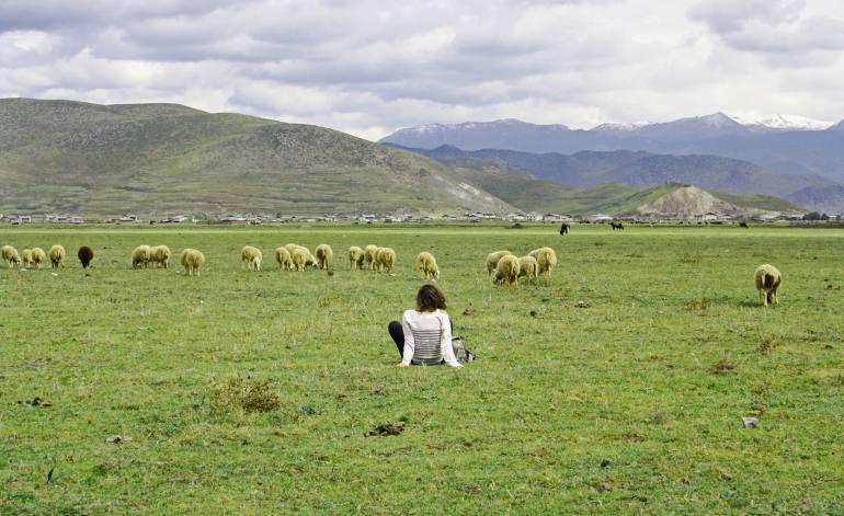 שמורת אגם נאפה (צילום: יובל ירושלמי)