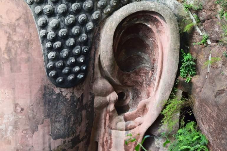 אוזן הבודהה. מאכלסת מערכת ניקוז מתוחכמת (צילום: טל ניצן)