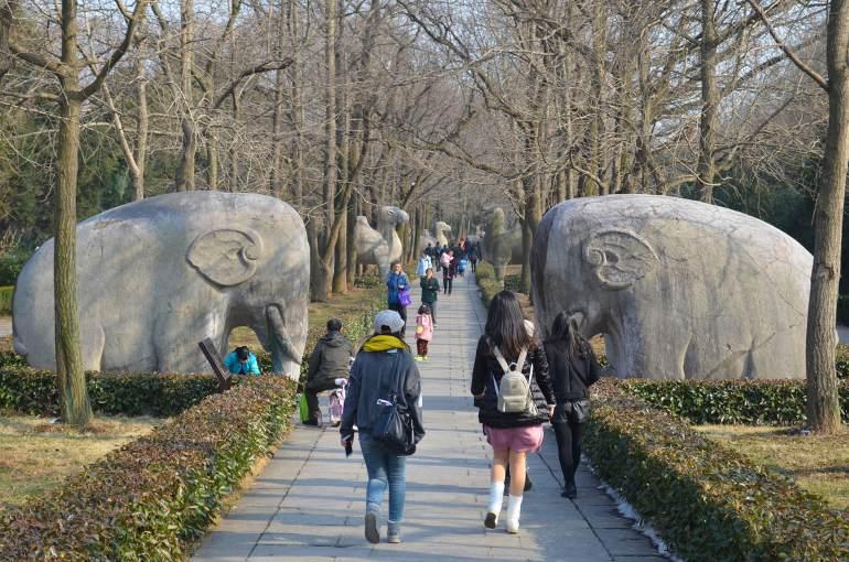 """פסלי חיות כחלק מ""""דרך הרוחות"""" (צילום: נוגה פייגה)"""