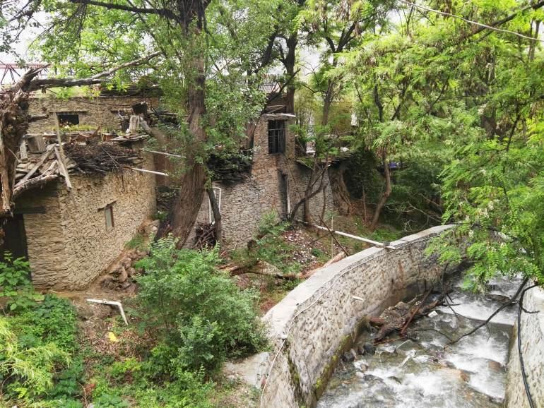 פינה של טבע בכפר טאופינג (צילום: שני אפלבאום)