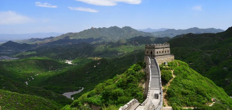 החומה הגדולה. פורחת בחודשי הקיץ צילום: טל ניצן)