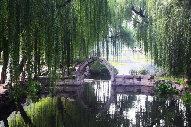 גשר האבן היחיד ששרד בפארק (צילום: טל ניצן)
