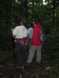 Twitching in the cloud forest