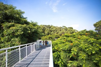 天空步道可看見豐富的綠帶以及彰化的風景。