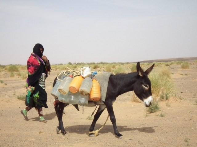 03.婦女每天牽著驢子,前往古井邊打水。
