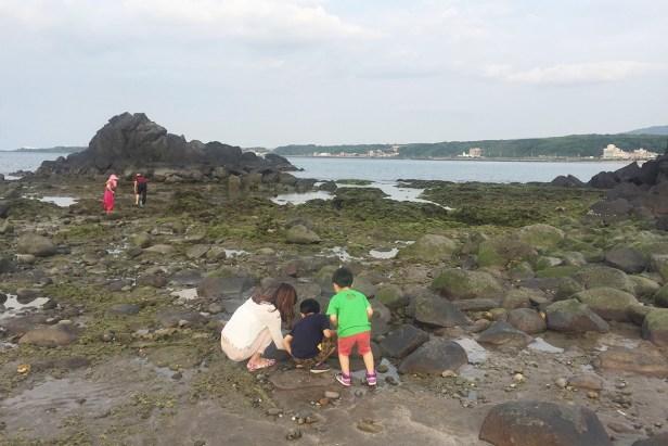 麟山鼻海岸有很多潮間帶生物等著你跟孩子一起觀察。