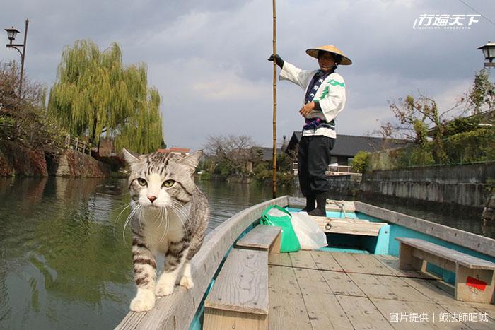 日本人氣明星「旅貓喵吉」帶路!47都道府縣制霸的「6景點推薦」