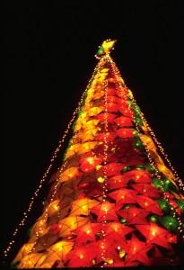 世界最長的聖誕節竟然是這個國家,長達5個月都沈浸在聖誕氣氛中