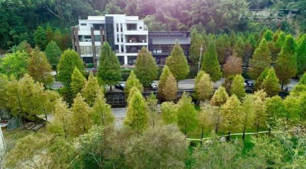 台灣,台中,落雨松,松之戀,秘境