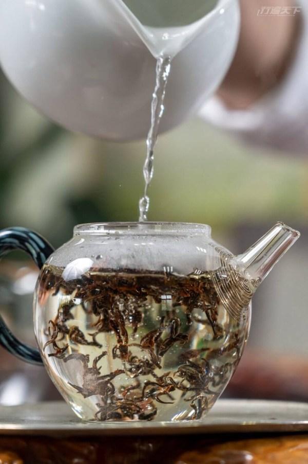新竹,東方美人茶,峨嵋,徐耀良茶園