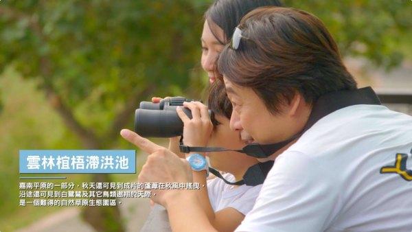 雲嘉南,風景管理處,賞鳥,馬拉松,生態旅遊,候鳥