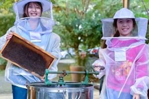 北海岸,海鮮,在地帶遊,幸福北海岸,野柳,瑪鋉漁村,海鮮,漁村文化,DIY手作,蜜餞,蜂農體驗