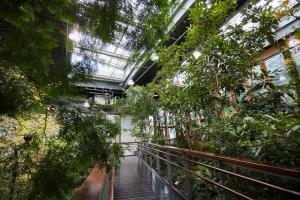 台北,綠建築,臺北典藏植物園,天使生活館,雨天出遊備案,花卉博覽會園區